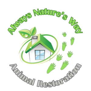 Always Natures Way Logo